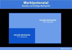 Marktpotenzial: Aktuelle und künftige Marktgröße